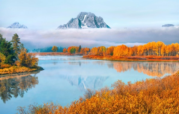 Picture autumn, forest, water, clouds, mountains, fog, couples, USA, national Park, Grand Teton, Wyoming, Oxbow Bend