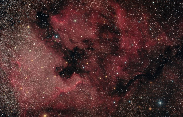 Picture nebula, Swan, North America, in the constellation, emission