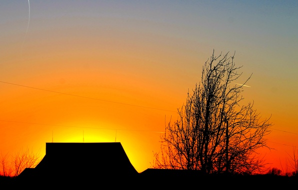 Picture roof, the sky, clouds, sunset, house, tree, silhouette, glow