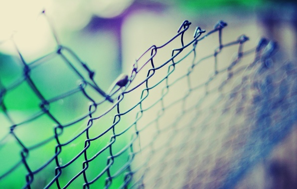Picture macro, light, blue, green, background, mesh, Wallpaper, the fence, wallpapers