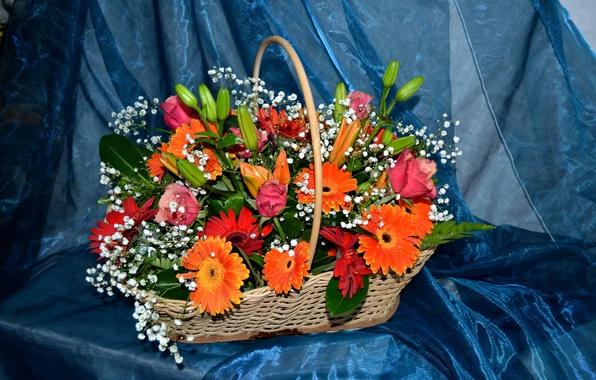 Picture flower, flowers, basket, Lily, roses, bouquet, basket, gerbera, beautiful