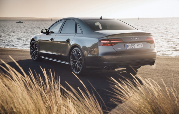 Picture auto, grass, light, Audi, Audi, rear view, More