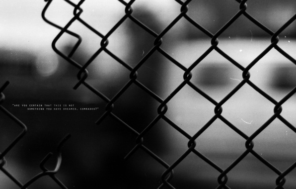 Picture the fence, wire, words, the expression