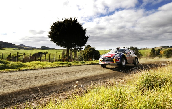 Picture The sky, Field, Tree, Sport, Machine, Speed, Citroen, Day, Citroen, Red Bull, DS3, WRC, Rally, …