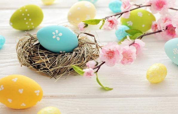 Picture flowers, eggs, Easter, socket, flowers, spring, Easter, eggs