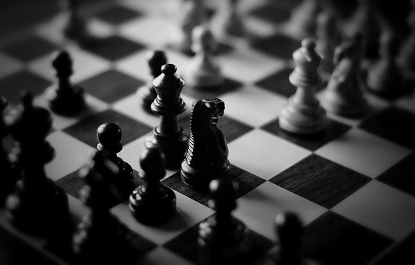 Picture white, chess, black