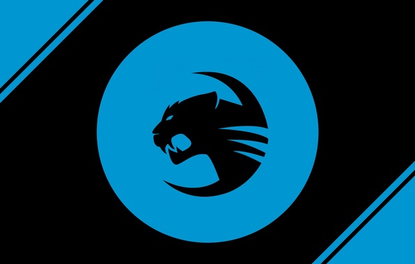 Photo Wallpaper Logo Blue Roccat Team