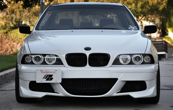 Picture Auto, Trees, BMW, Tuning, Machine, Before