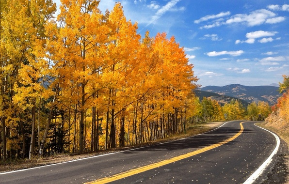 Picture road, autumn, forest, the sky, leaves, trees, mountains, nature