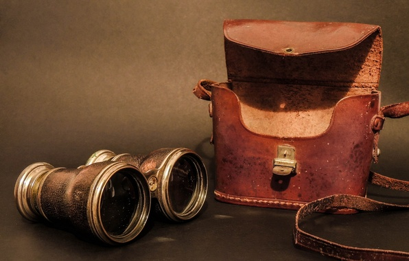 Picture optics, binoculars, case