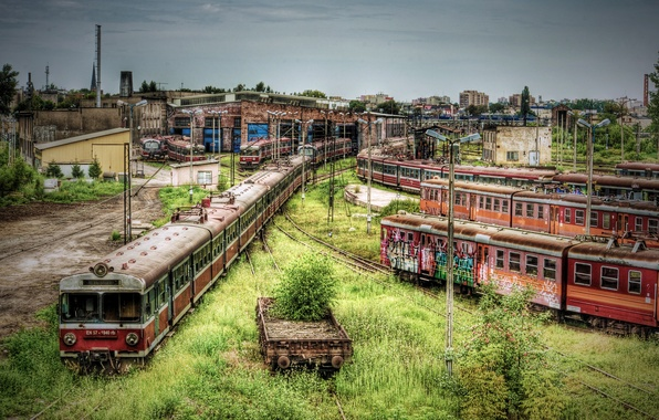 Picture metro, thickets, train, cars, railroad, buildings, abandonment