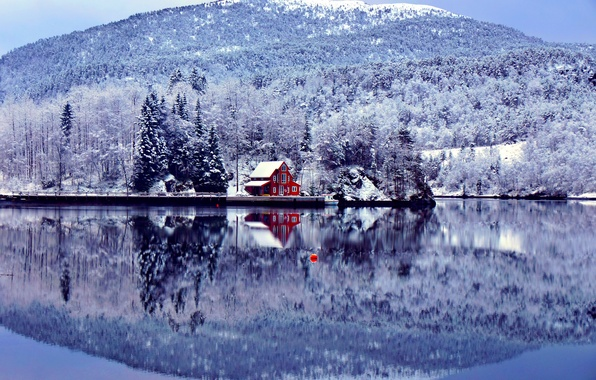 Picture winter, forest, lake, house, blue, shore, mountain, float