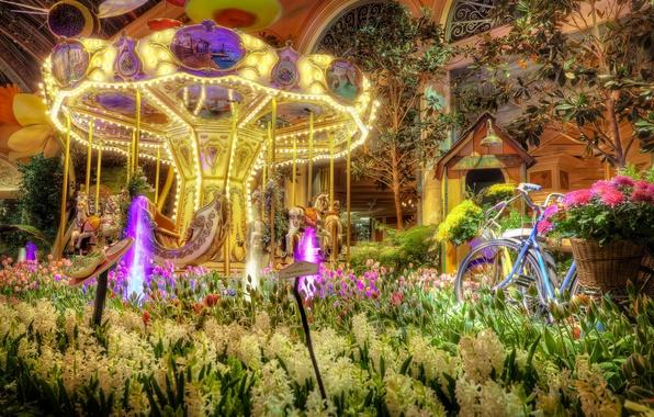 Picture flowers, bike, Las Vegas, tulips, carousel, the hotel, Las Vegas, hotel, hyacinths