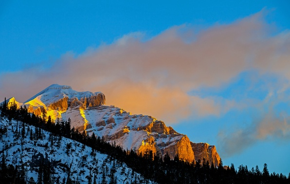 Picture winter, the sky, snow, trees, sunset, rock, mountain, slope