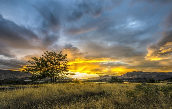 Picture the sky, grass, the sun, clouds, sunset, mountains, the city, tree, valley