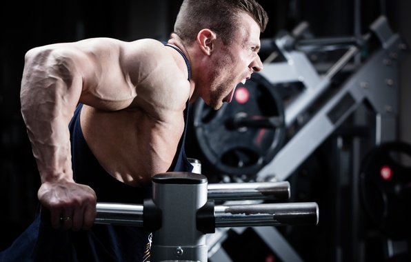 Photo wallpaper strength, triceps, bodybuilder, muscular arms, workout, power, scream