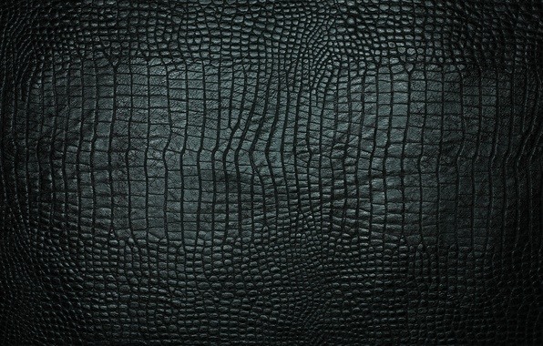 Picture texture, leather, crocodile, black