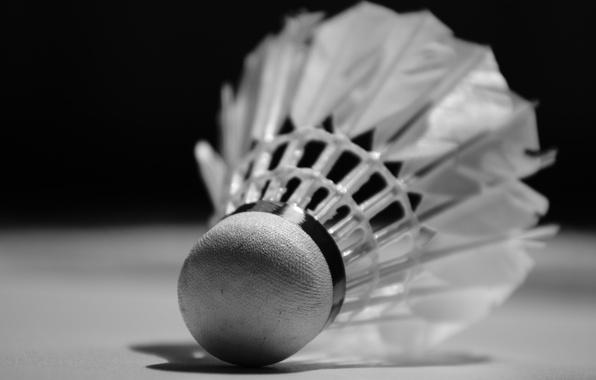 Picture plastic, feathers, Badminton