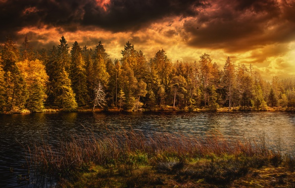 Picture lake, Nature, Clouds, Autumn, Switzerland, Forest, Seasons
