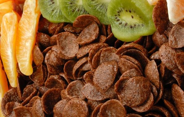 Picture orange, food, chocolate, kiwi, fruit, citrus, dessert, food, sweet, orange, chocolate, sweet, 1920x1080, fruits, dessert, …