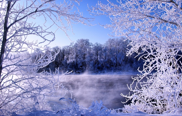 Picture winter, frost, river, frost