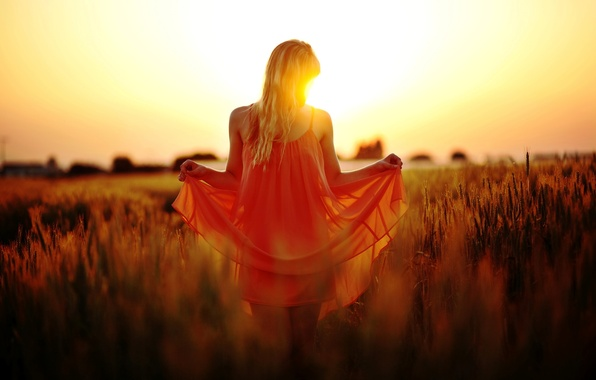 Picture field, girl, the sun, macro, sunset, nature, background, red, widescreen, Wallpaper, vegetation, mood, dress, blonde, …