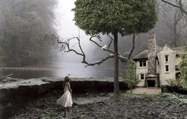 Picture house, tree, girl, installation