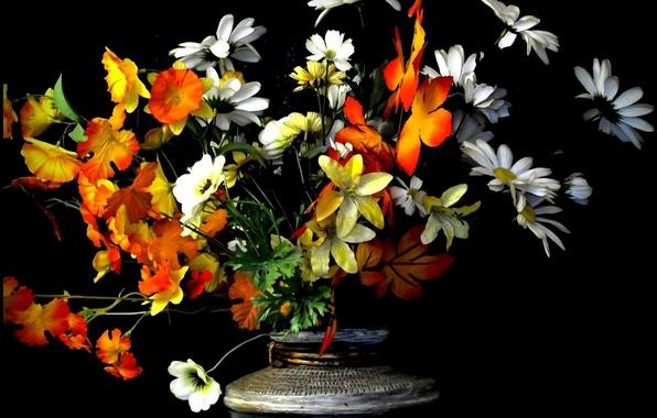 Picture background, bouquet, petals, vase