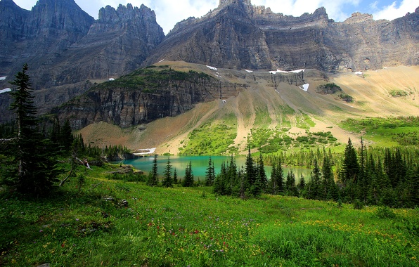 Picture grass, trees, flowers, mountains, lake, rocks, glade, USA, lawn, Glacier National Park
