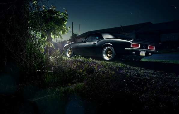 Picture Chevrolet, Camaro, Chevrolet, muscle car, muscle car, rear, Camaro, LSX 454