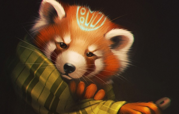Picture look, bear, art, Panda, plaid, red panda