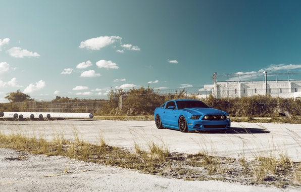 Picture Mustang, Ford, Muscle, Car, Sky, Blue, Front, 5.0