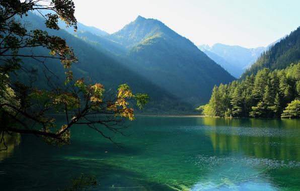Picture the sun, trees, mountains, branches, lake, beauty, China, Jiuzhaigou National Park