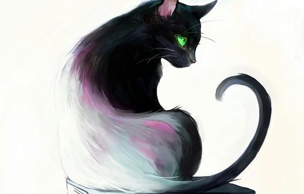 "Image result for Anime art cat"""