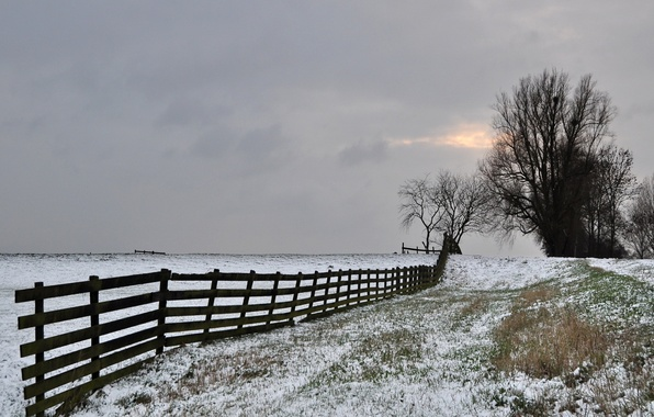Picture winter, frost, field, the sky, trees, the fence, grey