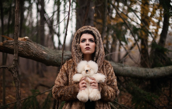 Picture forest, girl, toy, bear
