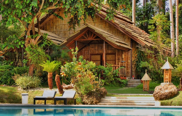 Picture water, trees, house, palm trees, pool