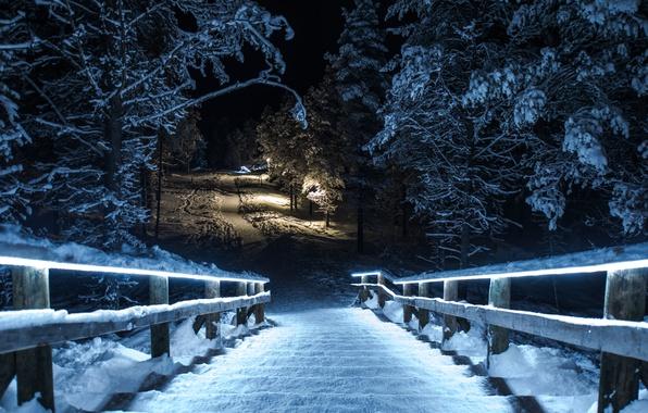 Picture winter, snow, night, bridge, Park