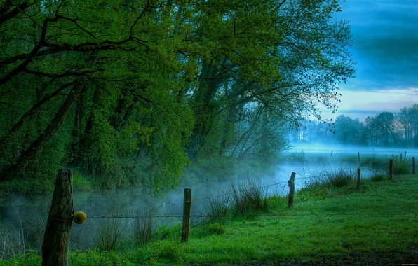 Picture Fog, River, Morning, Meadow