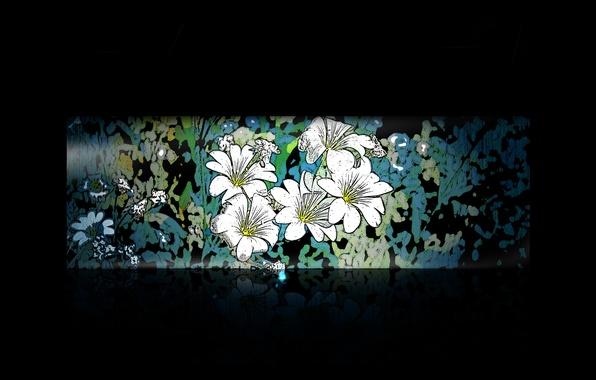 Picture flowers, the dark background, pattern, minimalism