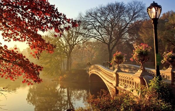 Picture autumn, landscape, bridge, Park, bridge, park, autumn, fall season