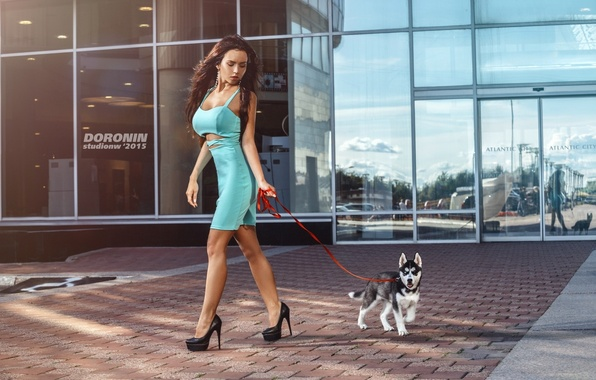 Picture girl, reflection, the building, dog, figure, slim, dress, brunette, hairstyle, leash, walk, husky, photographer, glass, …