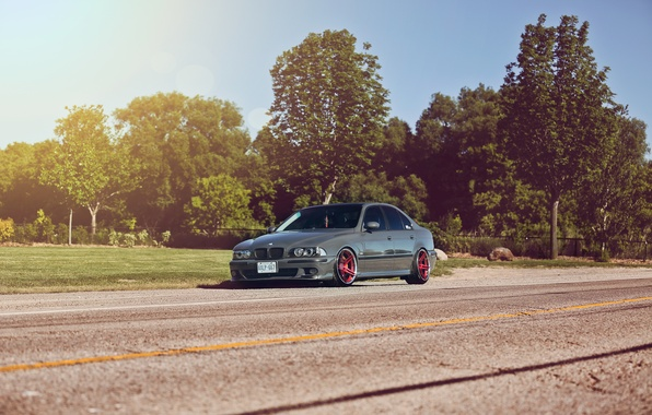 Picture trees, BMW, BMW, Blik, E39, 5 Series