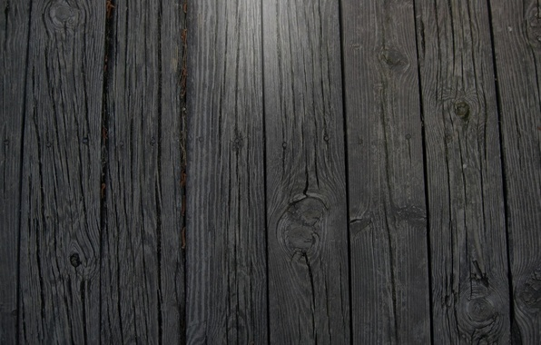 Picture surface, tree, black, Board, color, texture, texture, 2560x1600