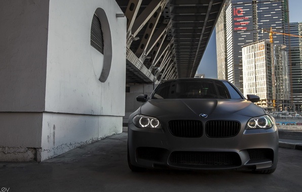 Picture machine, BMW, BMW, photographer, before, grille, auto, photography, photographer, Alex Bazilev, Alexander Bazylev, Alexander Bazilev