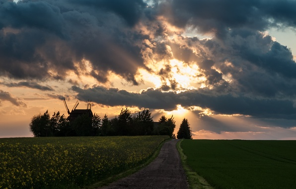 Picture road, field, the sky, the sun, clouds, rays, mill, rape