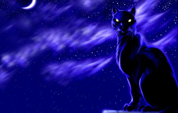Picture night, the moon, Figure, Koshak