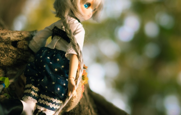 Picture clothing, hair, toy, doll, braid, pigtail