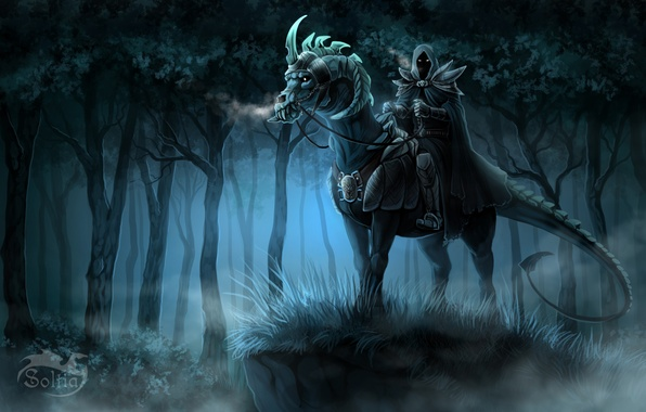 Picture forest, look, night, fiction, art, hood, rider, armor