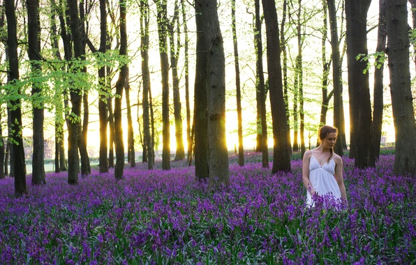 Picture girl, flowers, nature, morning, The carpets of bluebells